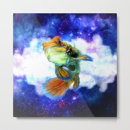 Mandarin Fish with Space Background Metal Print