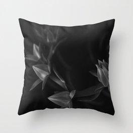 Petals | Flowers | Dark flowers | Gothic Decor | elegant goth Throw Pillow