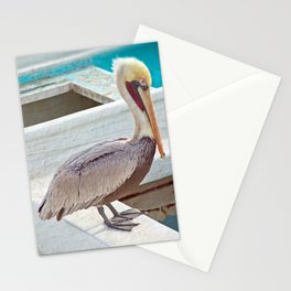PELICAN POSE Stationery Cards