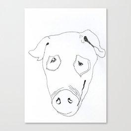 Pig Canvas Print