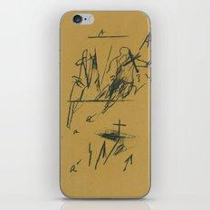 crossing 28 iPhone & iPod Skin