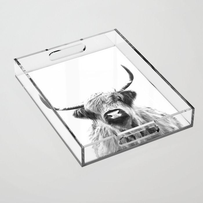 Black and White Highland Cow Portrait Acrylic Tray