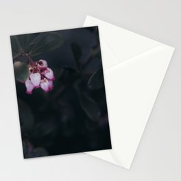 Pointleaf Manzanita Stationery Cards