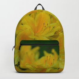 Orange Splash in the Garden Backpack