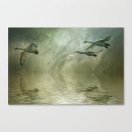 Whoopers Moon Canvas Print