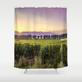 grapevine field Shower Curtain