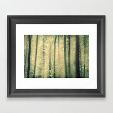into the woods 16 Framed Art Print