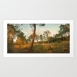 Goodnight Sun ! Art Print