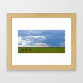 Zebra crossing Ndutu Framed Art Print