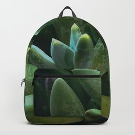 Exotic Succulents in Glorious Greens and Aqua Splashes Backpack