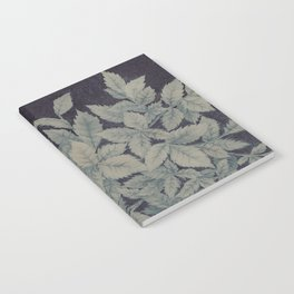 Roses plant Notebook