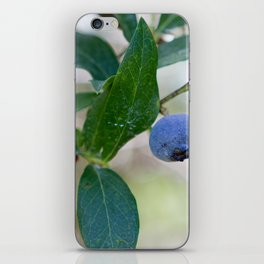 Blueberry Farm 2 iPhone Skin