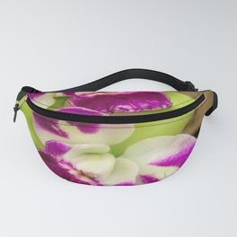 Proudly Peloric Purple... Fanny Pack