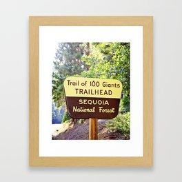 Trail of 100 Giants Vintage National Forest Sign Framed Art Print