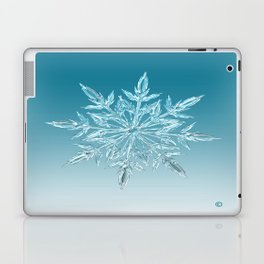 Blue Green Ice Crystal Laptop & iPad Skin