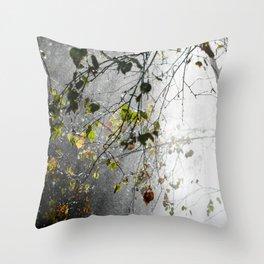 Silver Birch 2 Throw Pillow