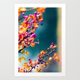 Happy autumn colors 2 Art Print