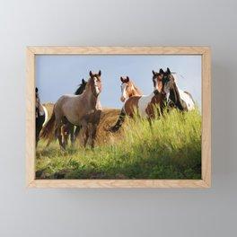 The Wild Bunch-Horses Framed Mini Art Print