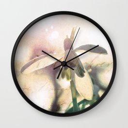 Snowdrops stretching towards the warm spring sun. Wall Clock