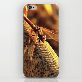 Elegant Red Darter Dragonfly iPhone Skin