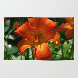 Fiery Daylily Flower - Hemerocallis 'Coleman Hawkins' Rug