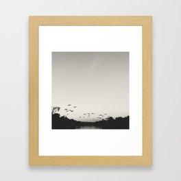 Flying Geese  Framed Art Print