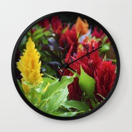 red , yellow, and pink flowers planted in the flower bed Wall Clock