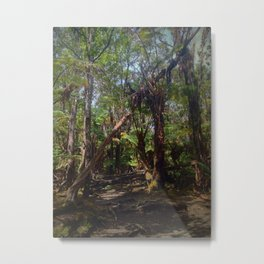 Big Island Nature Metal Print