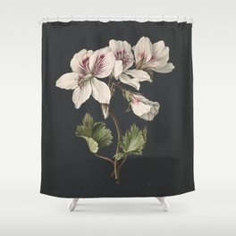 M. de Gijselaar - Pelargonium album bicolor (1830) Shower Curtain