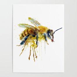 Watercolor Bee Poster