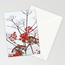 WILDFLOWERS in RED Stationery Cards