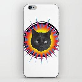 Black Cats Rule iPhone Skin