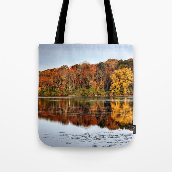Rock Cut State Park Tote Bag