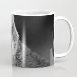 grey mongoose Coffee Mug