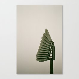 Faned out Canvas Print