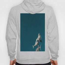 Sky shark! Hoody