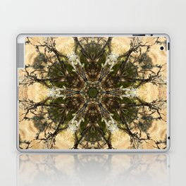 Ch'in Pacha Laptop & iPad Skin