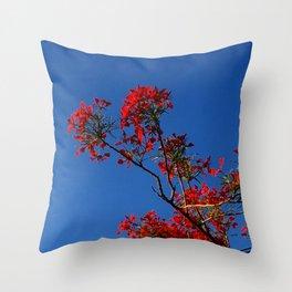 Rojo y Azul Throw Pillow