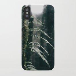 Ferns VI iPhone Case