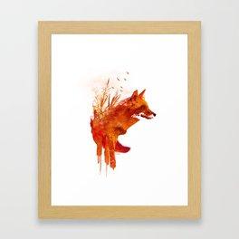 Plattensee Fox Framed Art Print