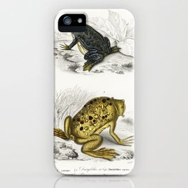 Shrinking frog (Pseudis Merianae) and Surinam toad (Pipa americana) illustrated by Charles Dessaline iPhone Case