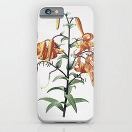 Vintage Tiger Lily Illustration iPhone Case