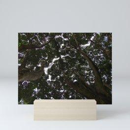 Treetop - Shinrin-Yoku Mini Art Print