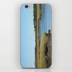 Marsh scene iPhone & iPod Skin