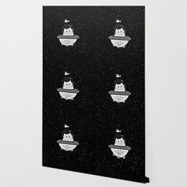 cat 59 Wallpaper