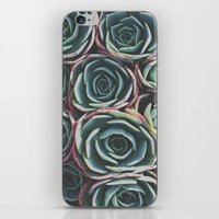 succulents iPhone & iPod Skins featuring SUCCULENTS by The Pixel Gypsy