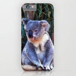 Koala Kid iPhone Case