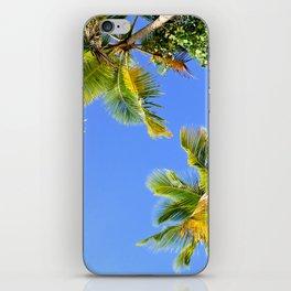 Palm Tree Paradise iPhone Skin