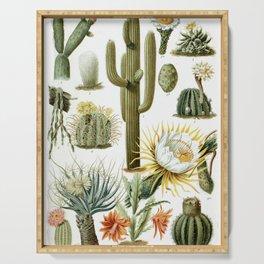 Cactaceae German Botanical Print from Brockhaus Encyclopedia Serving Tray
