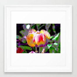 Sensations Framed Art Print
